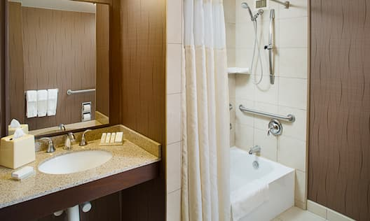 Accessible Guestroom Bathroom