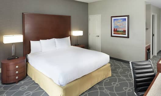 Premium Room with King sized Bed