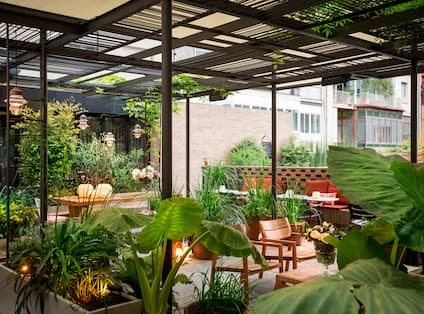 Outdoor Patio with Seating and Plants