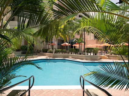 Daytime View of Outdoor Pool and Hotel Exterior Surrounded by Palm Trees