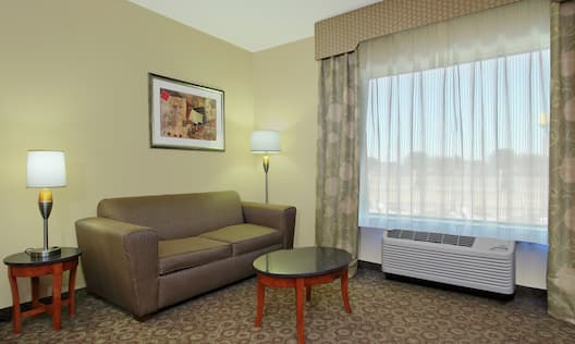 Guestroom Living Area with Sofabed