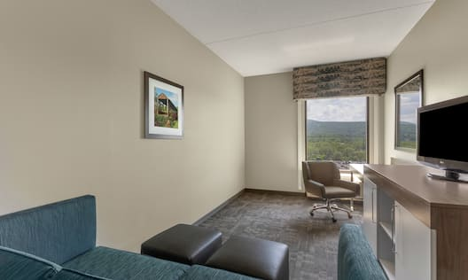King Studio Suite Guest Room with Sofa and Television
