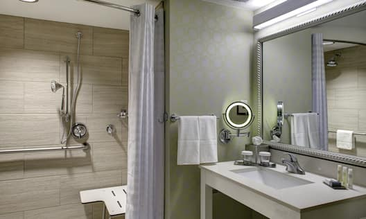 Accessible Shower and Sink With Vanity Mirror