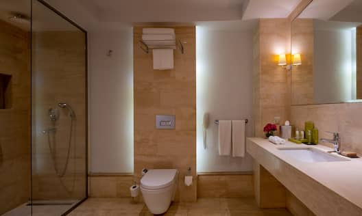 Bathroom with toilet, shower, sink and mirror