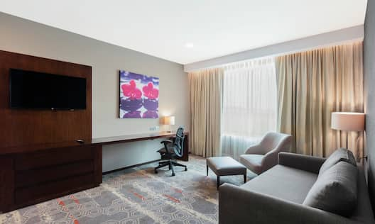 Suite Living Area with HDTV, Lounge Area, and Work Desk