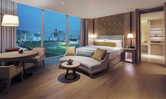 King Deluxe Room High Floor with Park View