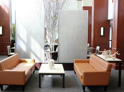 Hotel Lobby and Lounge Area with Modern Furnishings