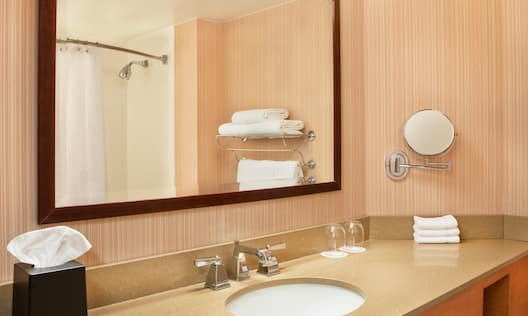 Guest Bathroom Mirror and Sink