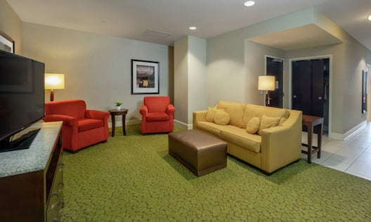 Sofa TV and Soft Chair in Living Room Area