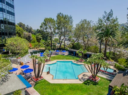 Outdoor swimming pool with grass area, trees and blue parasols