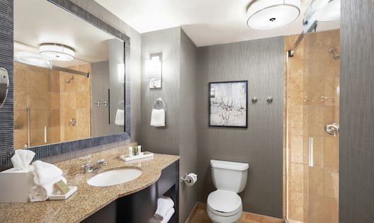 Bathroom Vanity Area with Large Mirror and a Shower
