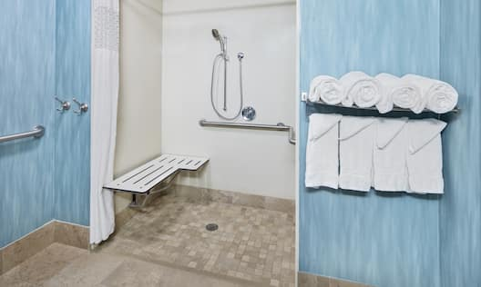Accessible Roll-In Shower with Seat
