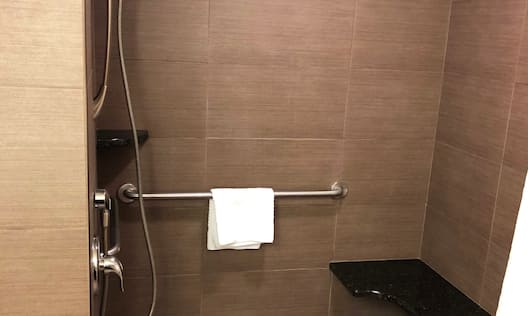 Handicap Accessible Bathroom with Roll-In Shower