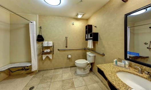 Accessible Bathroom Roll-In Shower with Bench and Handrails
