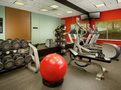 Fitness Center with Cardio Machines and Weights Rack