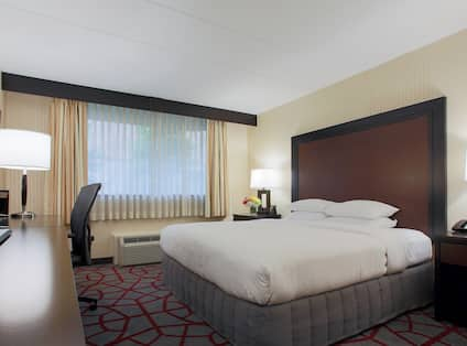 Accessible Room with King sized Bed