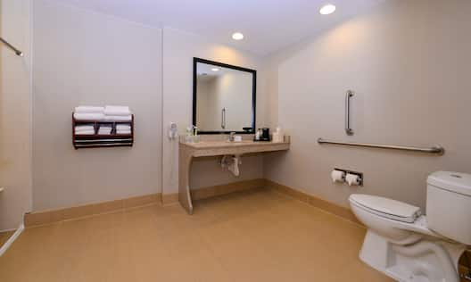 Accessible Guest Bathroom with Roll-In Shower and Vanity