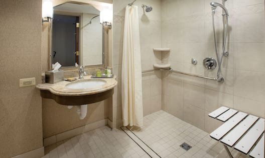 Guestroom bathroom with roll in shower and vanity area
