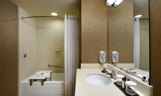 Suite - Accessible Suite Bathroom