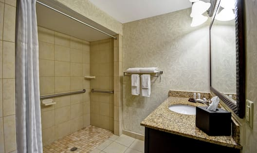 Accessible Roll-In Shower with Handrails