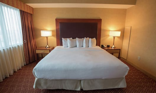 King Bed in Accessible Suite