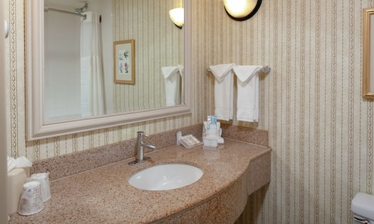 bathroom vanity with a mirror and shower products.