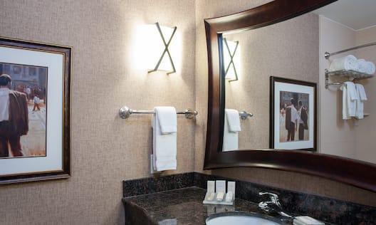 Primary Bathroom Mirror Sink Area