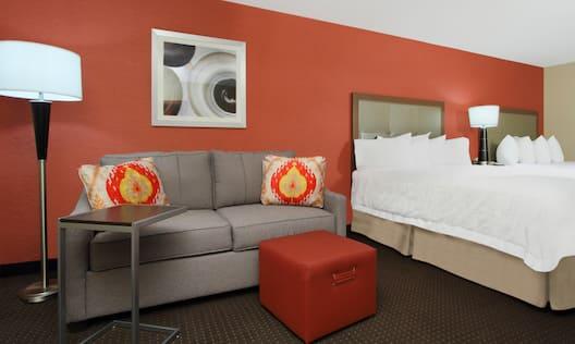 Double Queen Studio Suite Sofa