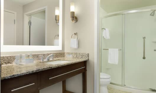 Bathroom Vanity Area with Large Mirror