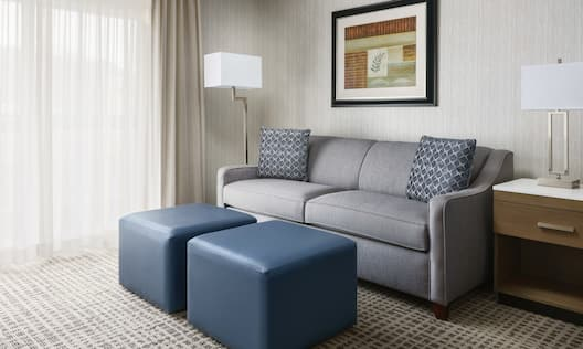 King Room Sofa with Refrigerator