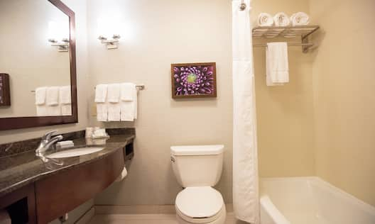 Double Queen Accessible Bathroom