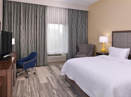 Accessible King Bed Room