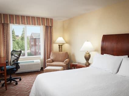 1 King Bed Guestroom