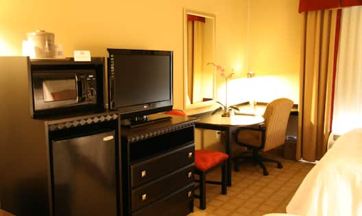 Guest Room with TV, Microwave and Desk