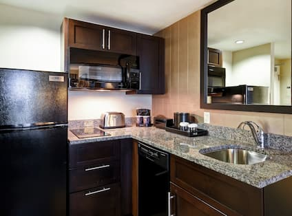 Guest Kitchen with Full Fridge Microwave Dishwasher and Sink