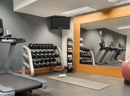 Fitness Center with Treadmill, Dumbbell Rack, Wall Mounted TV and Gym Ball