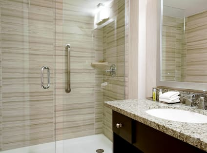 Bathroom Shower and Vanity Area