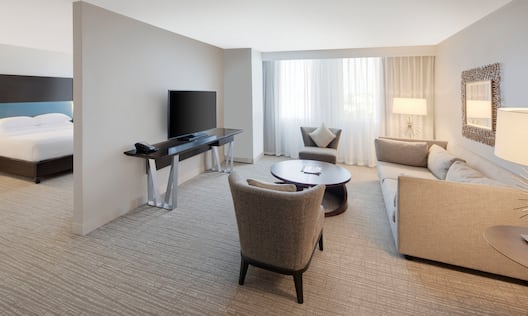 Suite Living Area and Partial View of Bedroom