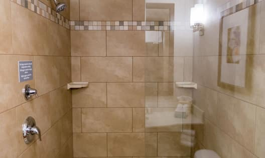 King Bed Deluxe Guest Room Shower