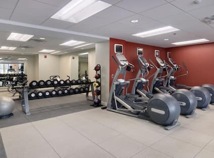 Fitness Center WIth Stability Ball, Free Weights, Weight Balls, and Cardio Equipment
