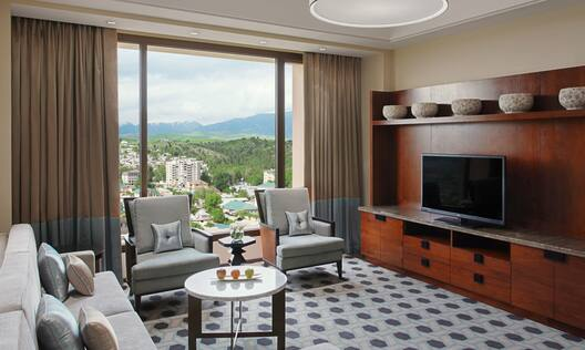 Suite Living Room with seating area and outside view