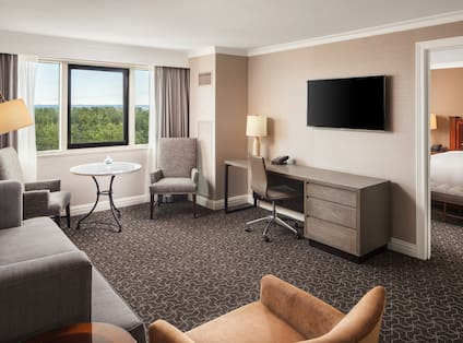 Accessible King Suite Living Area with Lounge Furniture, Outside View, and TV