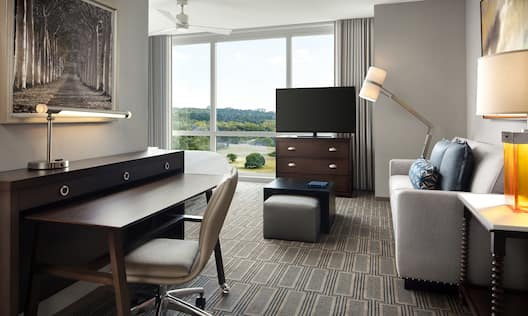 Studio Suite with Large Windows Sofa Desk and TV