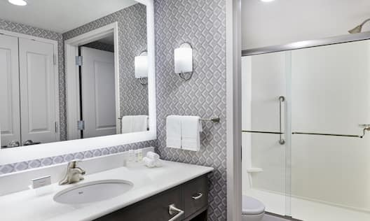 Suite Bathroom Vanity and Shower