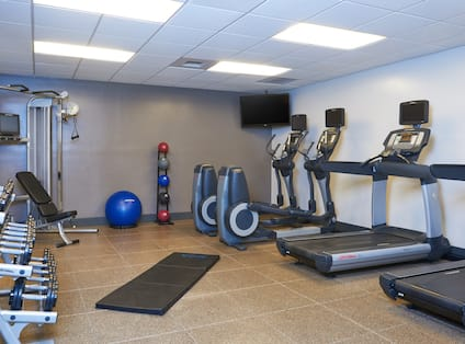 Fitness Center With Free Weights, Weight Machine, Weight Balls, Exercise Ball, TV, Cardio Equipment, and Floor Mat