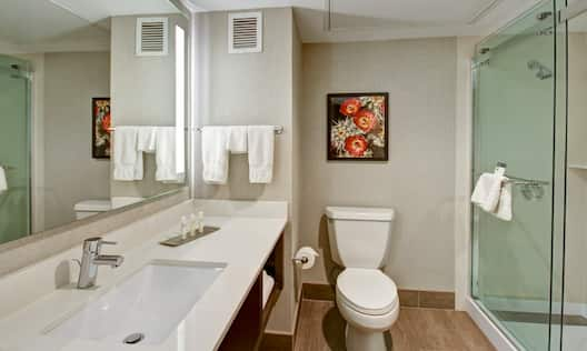 Large Vanity Mirror, Sink, Amenities, Toiletries, Fresh Towels, Wall Art Above Toilet and Shower With Glass Doors in Standard Bathroom