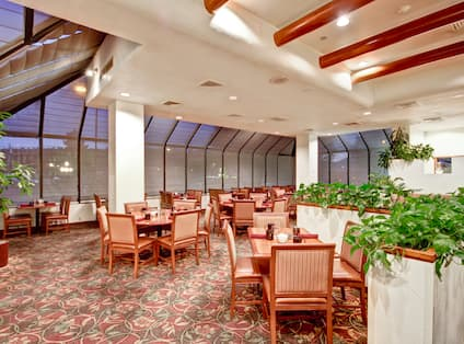Large Windows With Dusk View and Multiple Seating Options in Woodlands Café Dining Area