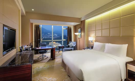 King Deluxe Mountain View Room