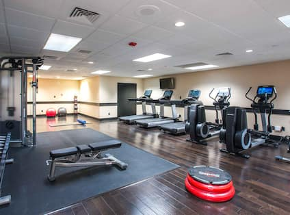 Fitness Center With TV, Cardio Equipment, Aerobic Stepper, Weight Bench, Free Weights, Mirrored Wall, Weight Machine, Exercise Balls, and Weight Balls