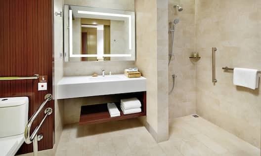 Roll-In Shower with Grab Bars and Handheld Showerhead in Accessible Guest Room Bathroom